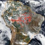 El denominado «Pacto de Leticia por la Amazonia»: breves apuntes
