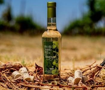 Vino del Desierto obtiene destacados puntajes en la Guía Mesa de Cata de La Cav, Con la evaluación de destacados expertos vitivinícolas