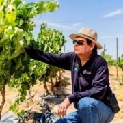 Vino del Desierto: Aporte desde la ciencia la agricultura en el desierto