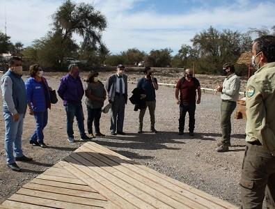 Consejeros regionales inspeccionan obras de reforestación del tamarugos en la Pampa del Tamarugal