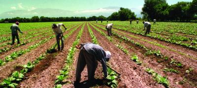¿Sabes qué es el Desarrollo Rural?
