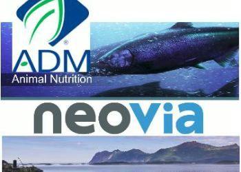 ADM consolida  líderazgo global en nutrición animal con la adquisición de Neovia