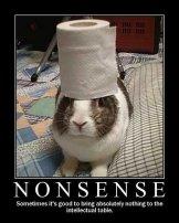 Nonsense-15