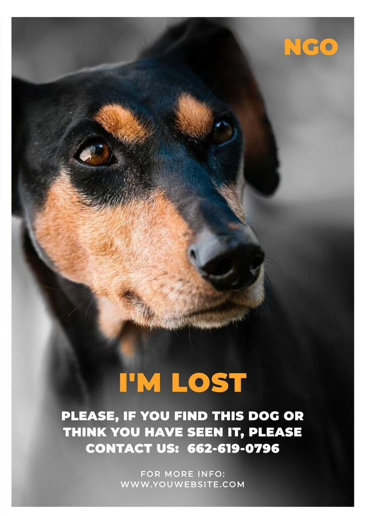 how to design posters for your missing pets