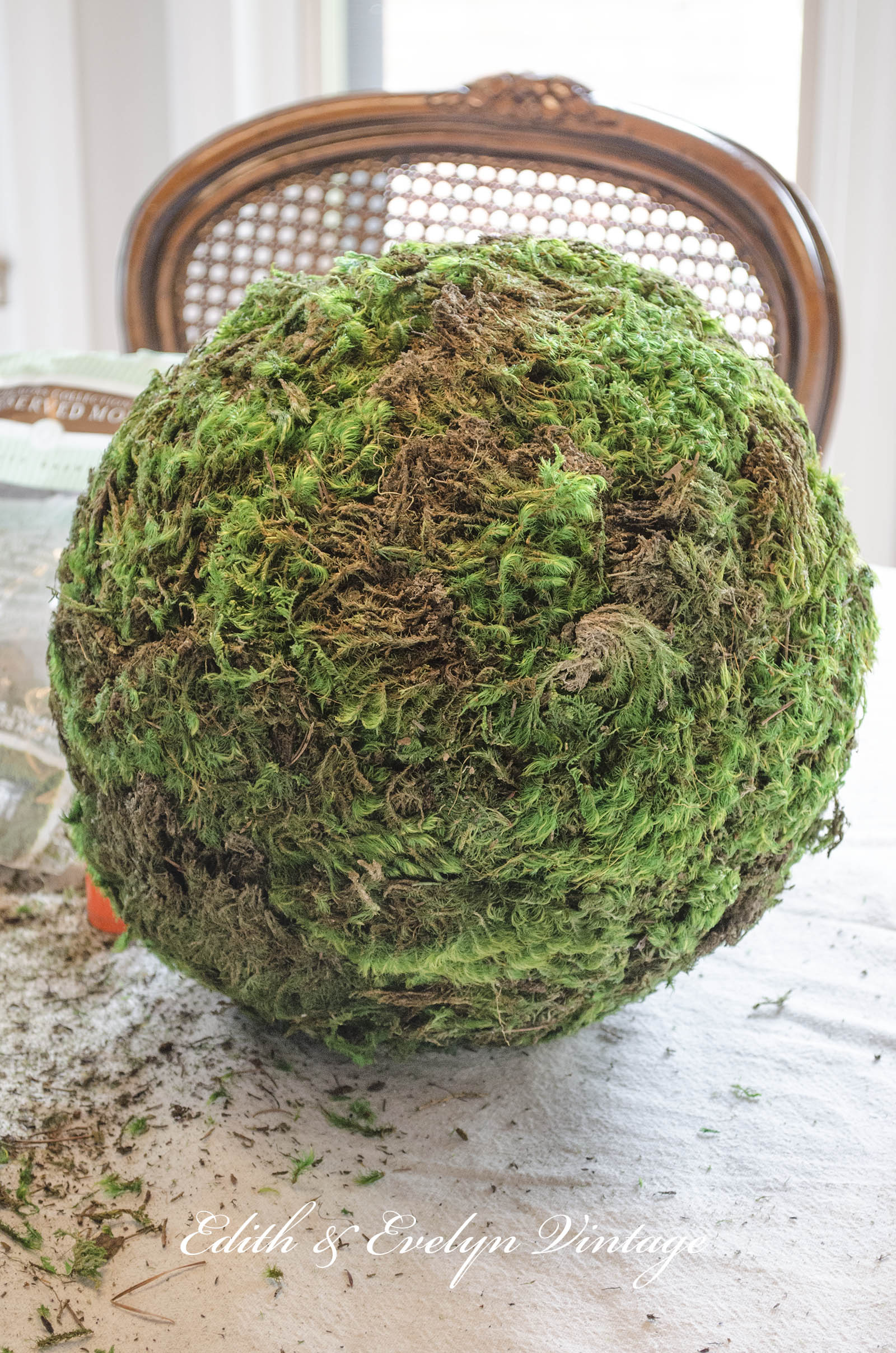 Moss Balls and a Bedroom Update | Edith \u0026 Evelyn Vintage