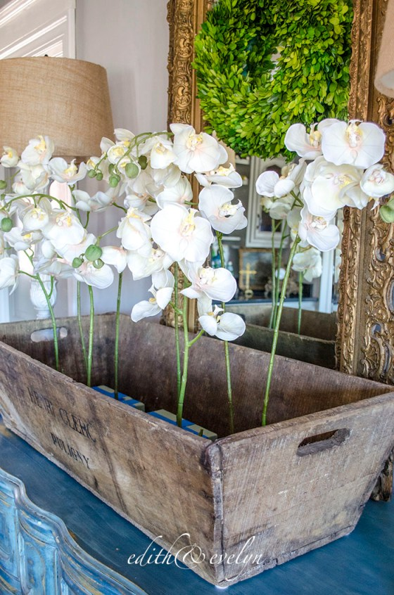 Champagne and Orchids | Edith & Evelyn | www.edithandevelynvintage.com