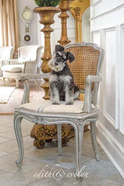 A French Chair Makeover and French Country Fridays!