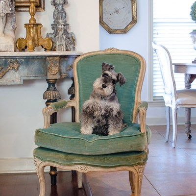 A Turquoise Velvet French Chair   Edith & Evelyn   www.edithandevelynvintage.com