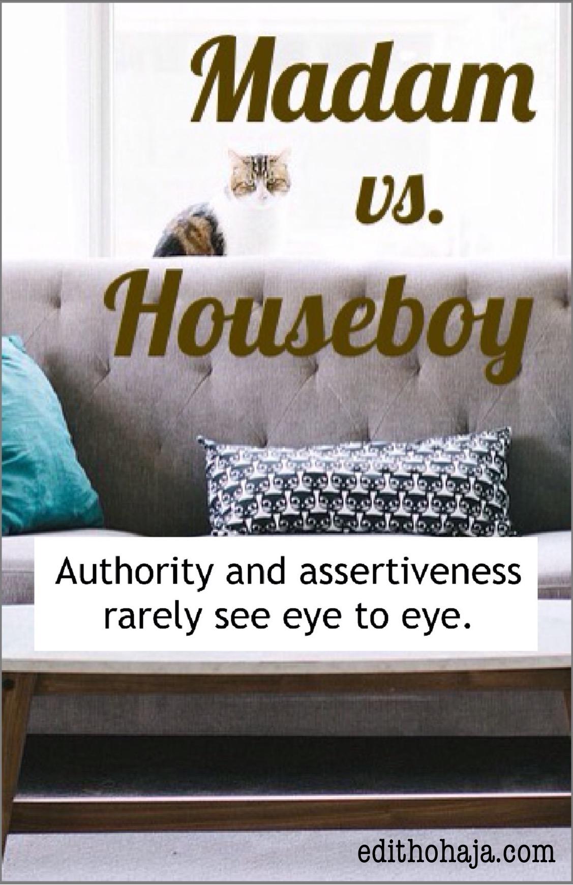 MADAM VS. HOUSEBOY (SHORT STORY)