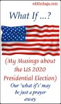 WHAT IF ...? (My Musings about the US 2020 Presidential Election)
