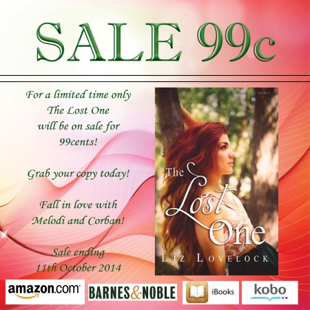 The Lost One by Liz Lovelock Sale