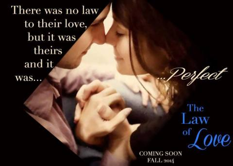 The Law of Love by Ashli Rose teaser