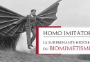 Homo imitator