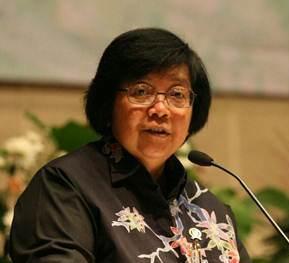 Perusahaan Sawit Asal Malaysia dan Singapura Terlibat Pembakaran Hutan