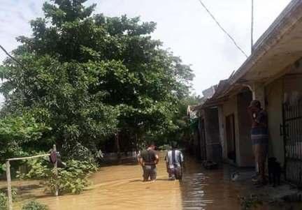 Penyakit Kencing Tikus Ancam Korban Banjir