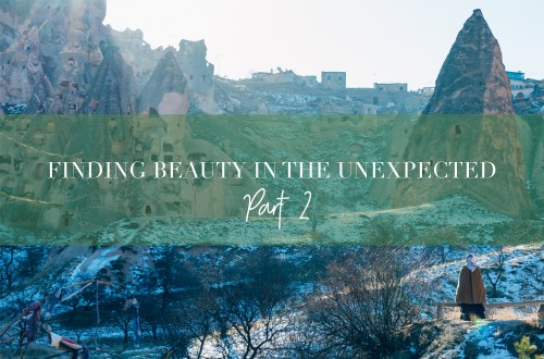 finding-beauty-in-the-unexpected-p2