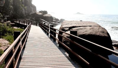 Câmara de Itanhaém vai receber proposta para erradicar o plástico nas praias