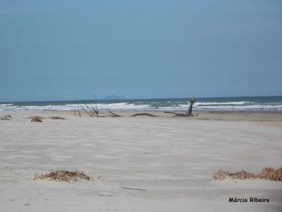 De novo: Lixo internacional é encontrado em praia paradisíaca de Peruíbe