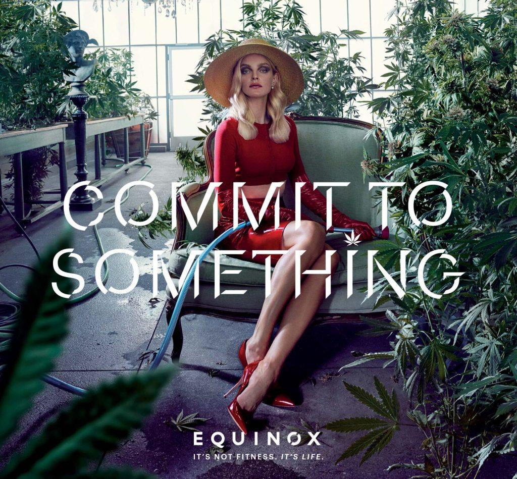 equinox_2017_campaign1