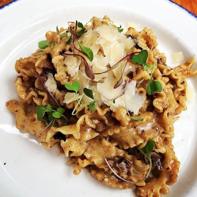 gusto 101 mushroom pasta