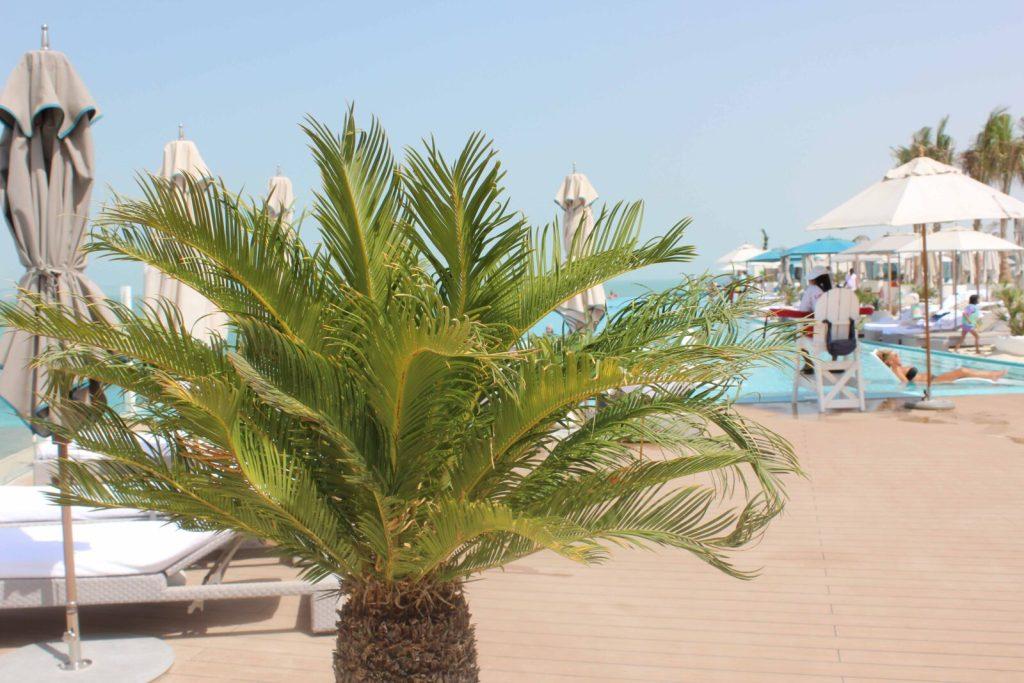 AlexDooley_GayGuysGuide_UAE3