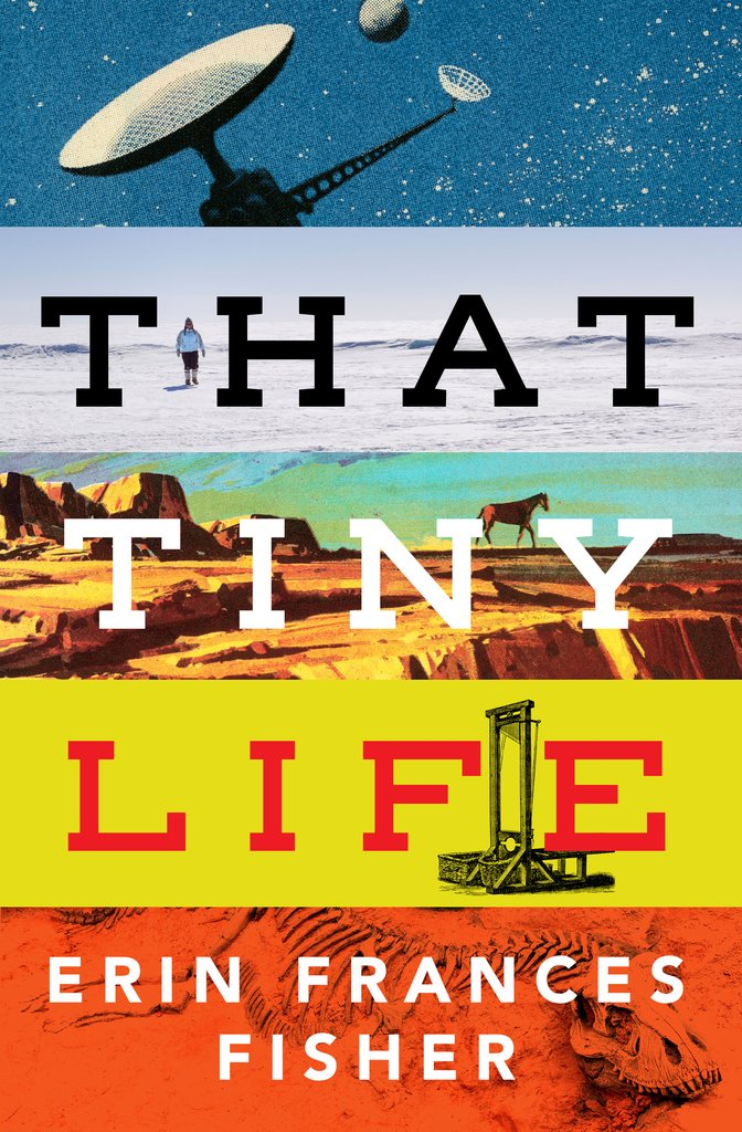 That Tiny Life Erin Frances Fisher - Short Stories By Women Toronto 2018 Edit Seven