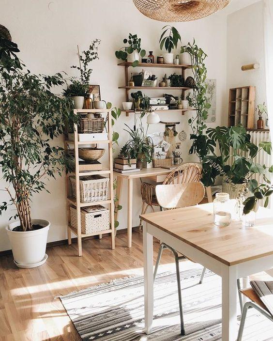 benefits of plants edit seven 2018 kait fowlie
