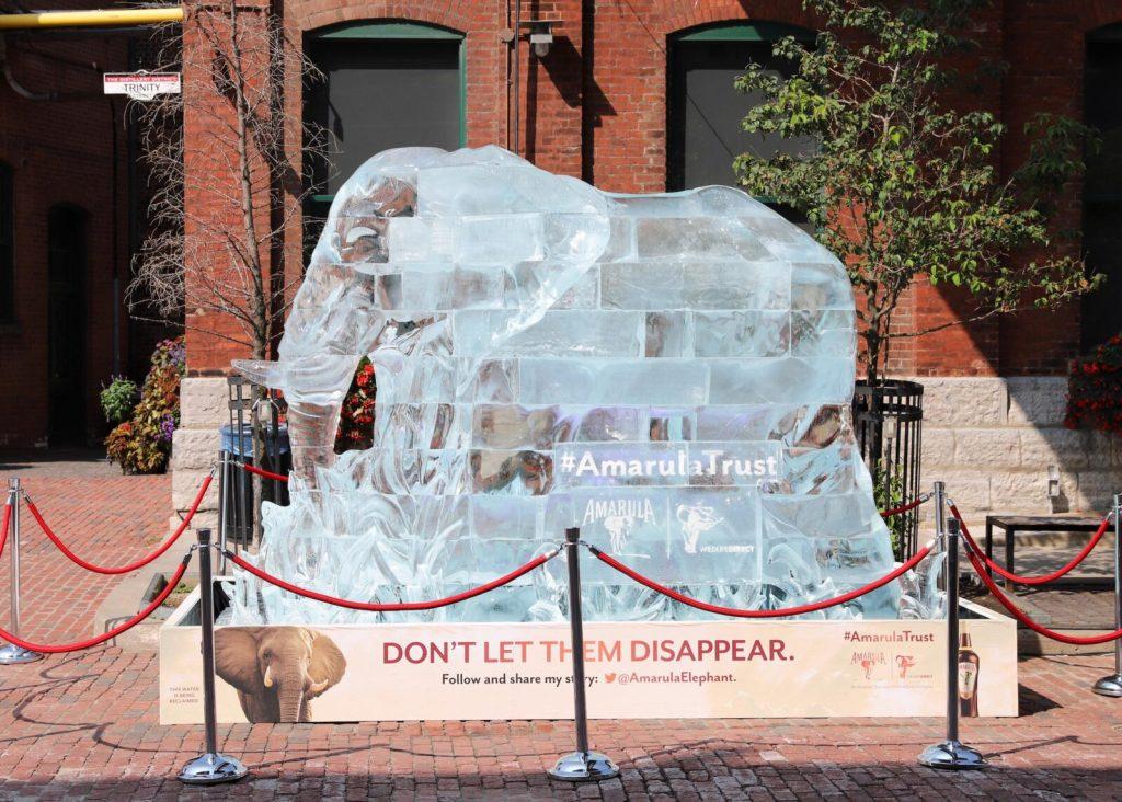 Amarula - World Elephant Day 2018