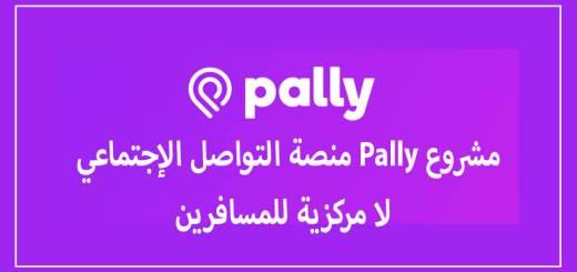 مشروع Pally منصة التواصل الإجتماعي لا مركزية للمسافرين