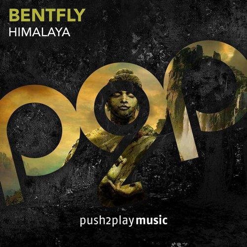 bentfly-himalaya