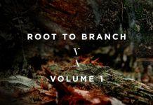 Lane 8 Root To Branch Volume 1 Album Art