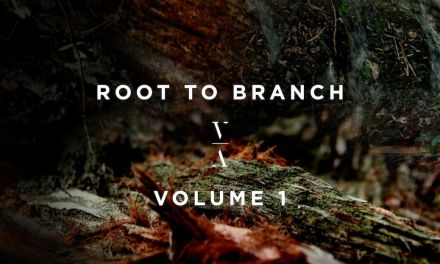 Lane 8 Announces 'Root To Branch' Compilation