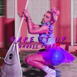 onhell rake it up remix