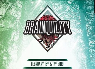 Brainquility Music Festival 2019 Banner