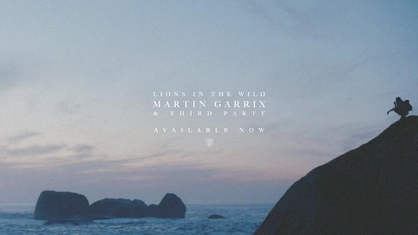 martin garrix lions in the wild