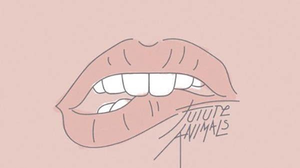 Future Animals - Ask For It