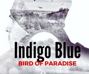 indigo blue bird of paradise