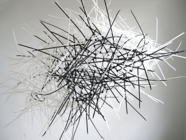 akamundo_sculpture_repetition_pattern_organic_Black_White_Cable_Zip_Ties_Pill-640x480