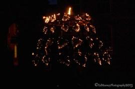 Dracula's Fire Garden (18)