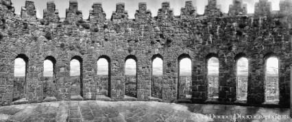 Nenagh Castle (11)