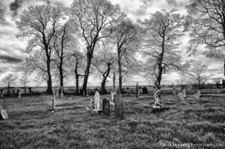 Yew Tree Cemetery (13)