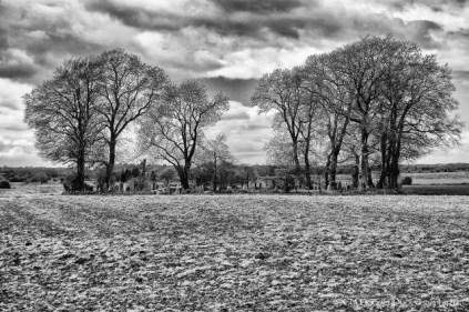 Yew Tree Cemetery (20)