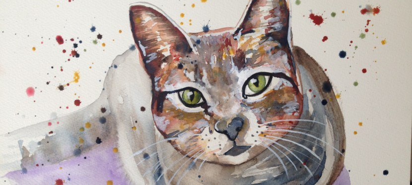 A cat for Renata