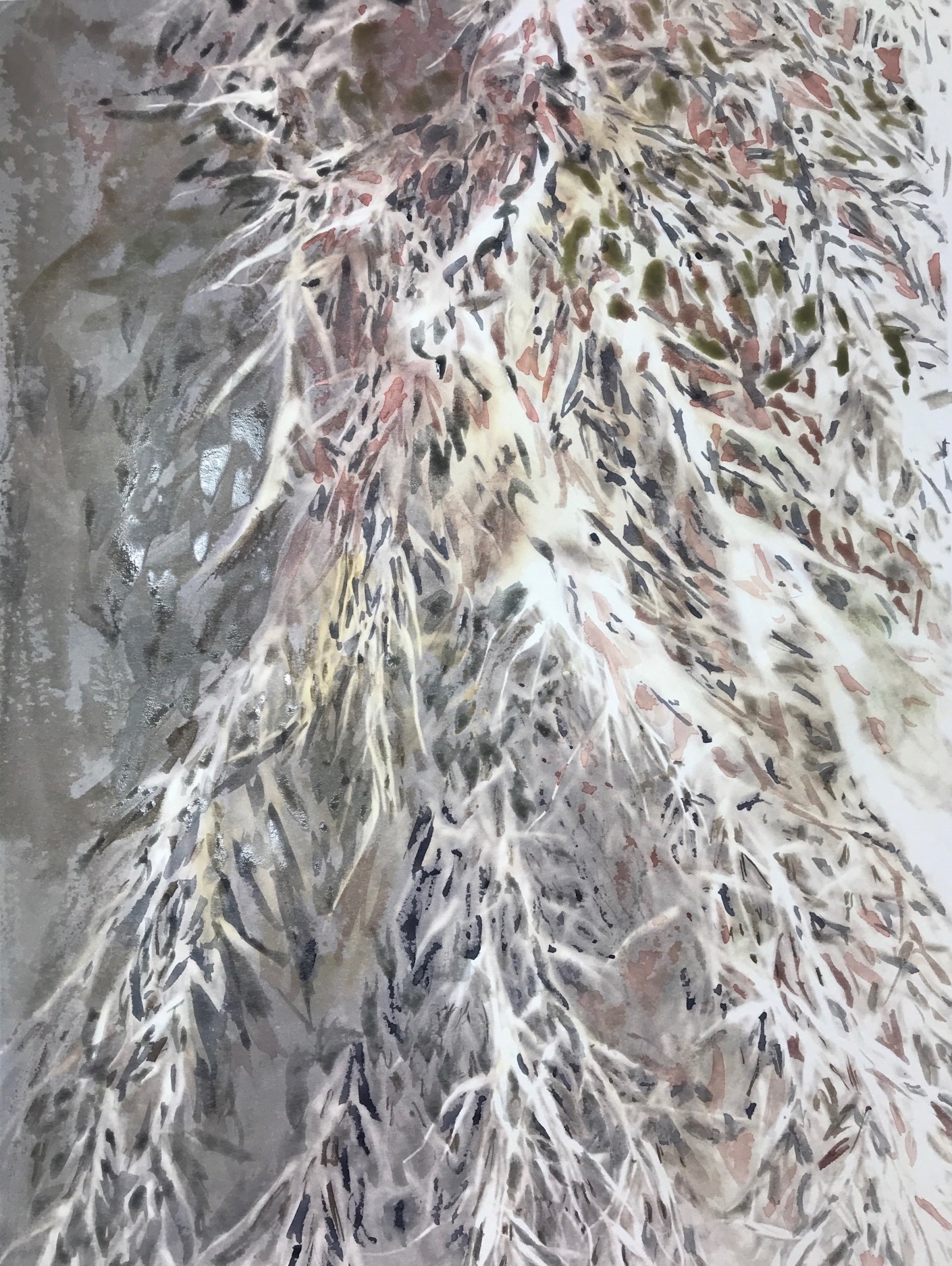pampas grass 31_watercolor in blickartwatercolor paper 31x41cm 300gsm_Edna Carla Stradioto 2018