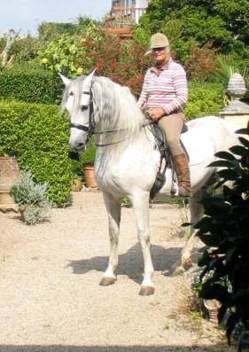 Danilon Spanish Stallion