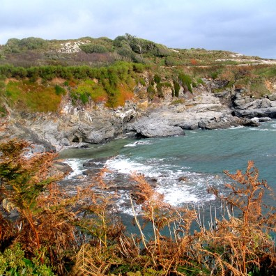 Autumn at Prussia Cove
