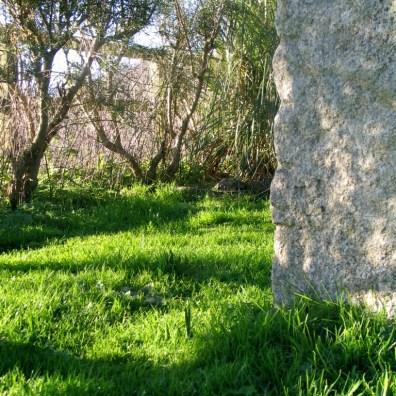 Granite and grass