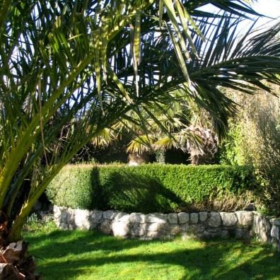 The mediterranean style courtyard Garden