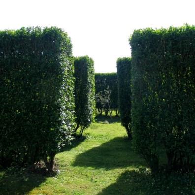 Garden entrances