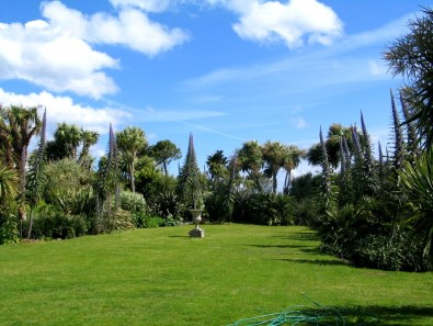 A cornish garden